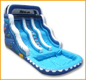 16' Double Lane Wavy Water Slide