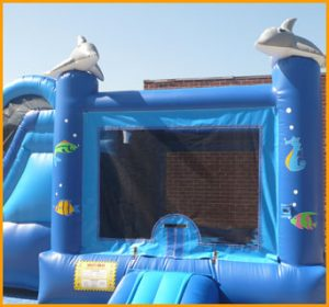 3 in 1 Inflatable Sea World Combo