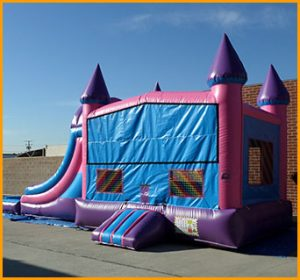 3 in 1 Wet Dry Princess Castle Module Combo