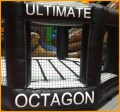 Inflatable Mini Ultimate Octagon