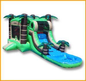 Wet/Dry Tropical Bouncer Slide Combo