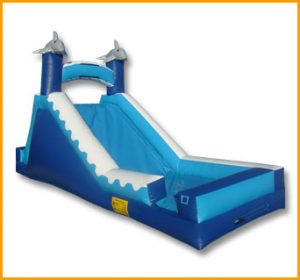 14' Wet and Dry Dolphin Slide