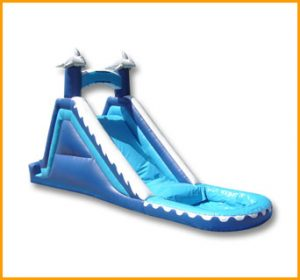 17' Dolphin Water Slide