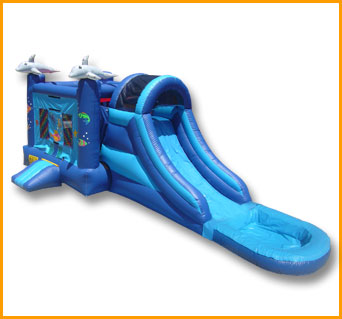 3 in 1 Wet and Dry Sea World Combo