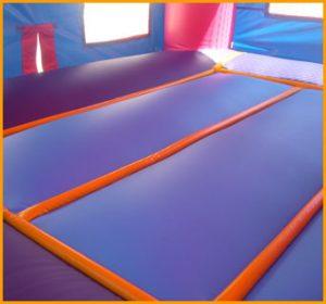 Blue and Purple Module House