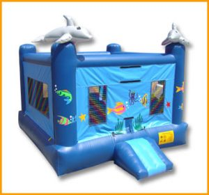 Sea World Inflatable Jumper